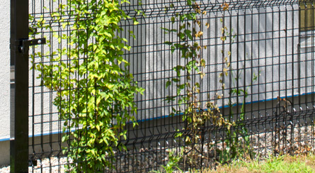 Green Wire Fencing | Omega Ii Fence Systems